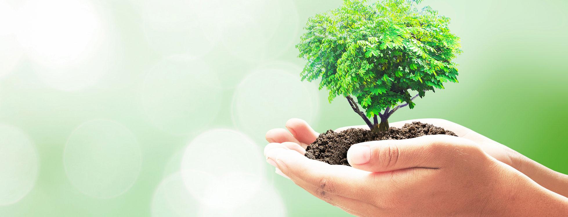 Image result for okolje